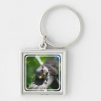Nussartiges Eichhörnchen Keychain Schlüsselanhänger