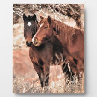 Nuzzling Pferde Fotoplatte