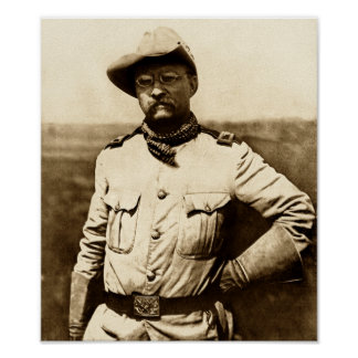 Oberst Theodore Roosevelt Poster