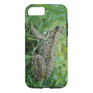 Ochsenfrosch starker iPhone 7 Fall iPhone 7 Hülle