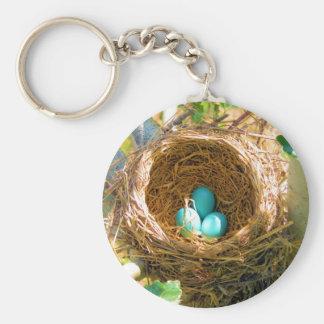 Oeufs de Robin dans un nid d'arbre de jardin Porte-clé