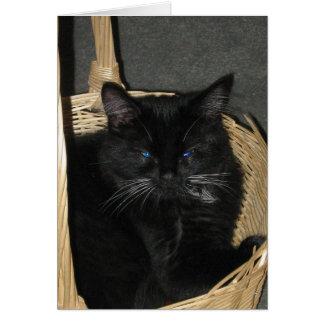 Offene Kätzchen-Gruß-Karte Grußkarte