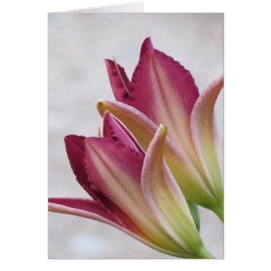 Öffnungs-Blumenblätter - Taglilien Karte
