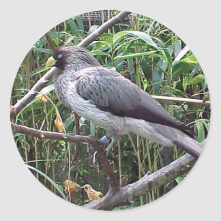 Oiseau Adhésif Rond