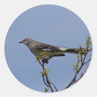Oiseau Adhésifs Ronds