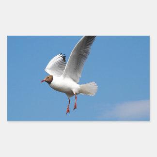 Oiseau de mouette autocollant en rectangle