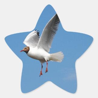 Oiseau de mouette autocollants en étoile
