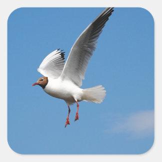 Oiseau de mouette sticker carré