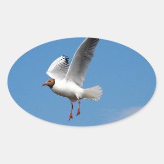 Oiseau de mouette autocollants ovales