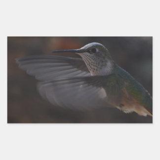 Oiseau de ronflement autocollants en rectangle