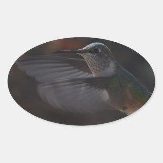 Oiseau de ronflement stickers ovales