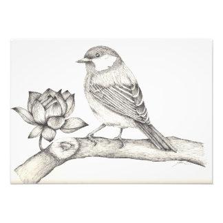 Oiseau et fleur photo d'art