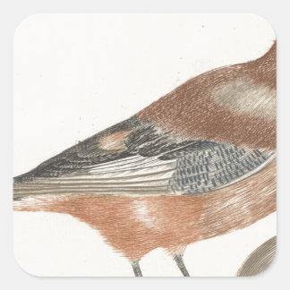 Oiseau Sticker Carré