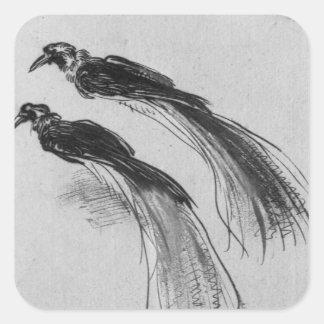 Oiseaux Sticker Carré