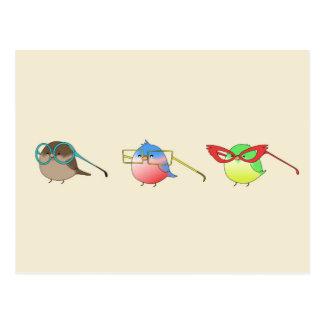Oiseaux drôles carte postale