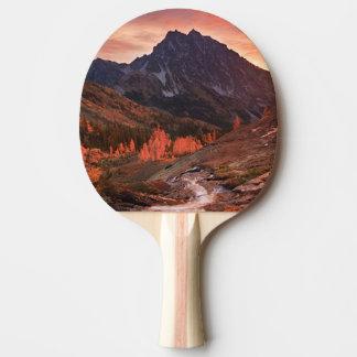 Oktober-Licht auf Scheinwerfer-Becken Tischtennis Schläger