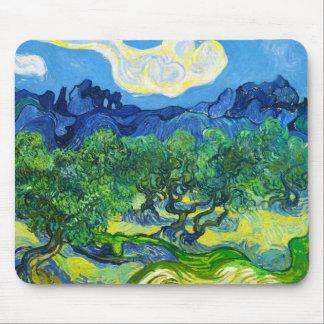 Olivenbäume mit dem Alpilles im Hintergrund Mousepad
