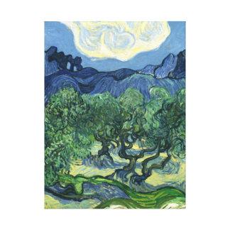 Olivenbäume Van Gogh     1889 Leinwand Druck