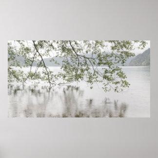 Olympischer Nationalpark des See-Halbmond- , WA Poster