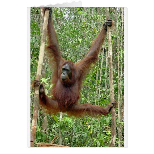 Orang-Utan ein hangin Grußkarte