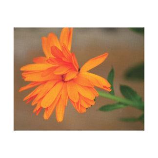 Orange Blumenblumenblätter des schönen Leinwanddruck