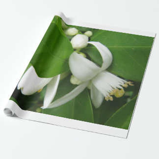 Orange Blüten-Packpapier Geschenkpapier