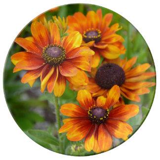 Orange Echinacea-Blumen Teller Aus Porzellan