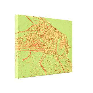 Orange Fliege Leinwand Drucke