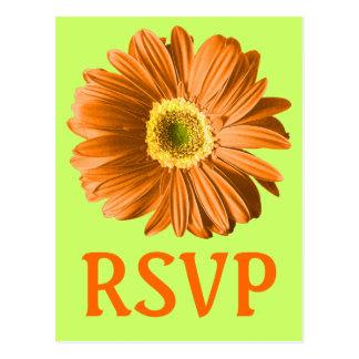 Orange Gänseblümchen-Blumen-UAWG oder Gewohnheit Postkarte