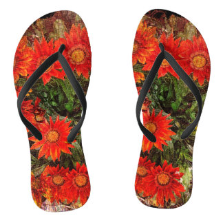Orange Gazania-Gänseblümchen-Blumen Flip Flops
