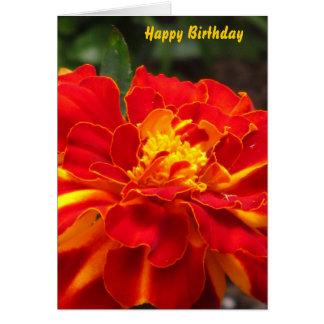 Orange Gelb-Ringelblumen-Blume Karte