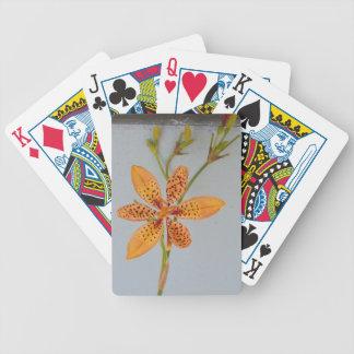 Orange gepunktete Iris genannt eine Bicycle Spielkarten