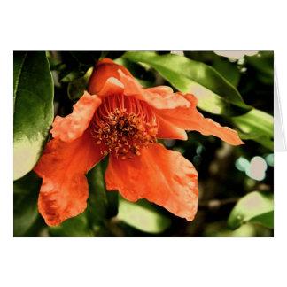 Orange Granatapfel-Blumen-Gruß-Karte Karte