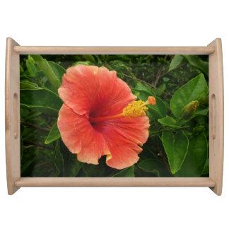 Orange Hibiskus-Blume Tablett