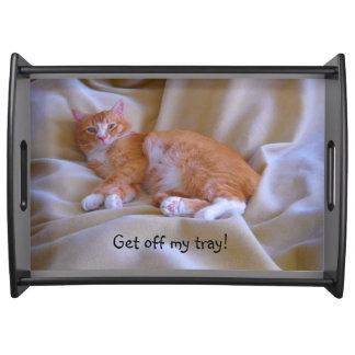 Orange Katze Serviertablett