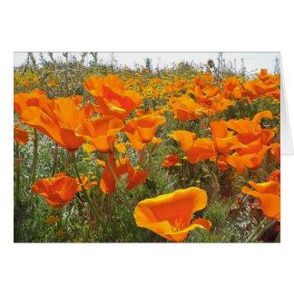 Orange Mohnblumen-Feld der Blumen Karte