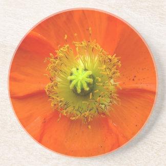 Orange Mohnblumen-Untersetzer Getränke Untersetzer