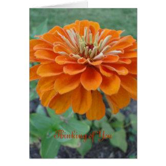 Orange Ringelblume/Denken an Sie Karte