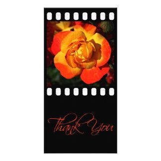 Orange Rose danken Ihnen Foto-Karte Photo Grußkarte