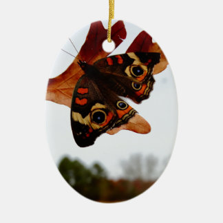 orange Schmetterling mit blauen Stellen Keramik Ornament
