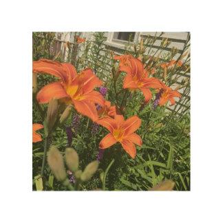 Orange Tageslilien am Bauernhof - Holzdruck