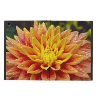 Orange und gelber Dahlie-Blume ipad Luftkasten