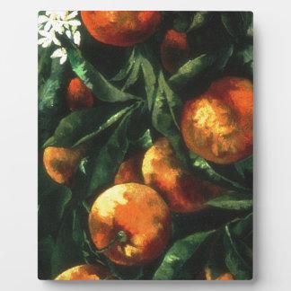 Orangen Fotoplatte