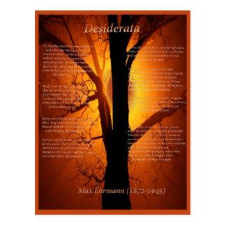 Orangenbaum Postkarte