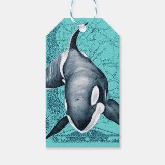 Orca-Karte aquamarin Geschenkanhänger