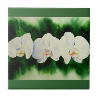 Orchidee 3 kleine quadratische fliese