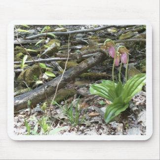 Orchidée de pantoufle de dame rose tapis de souris