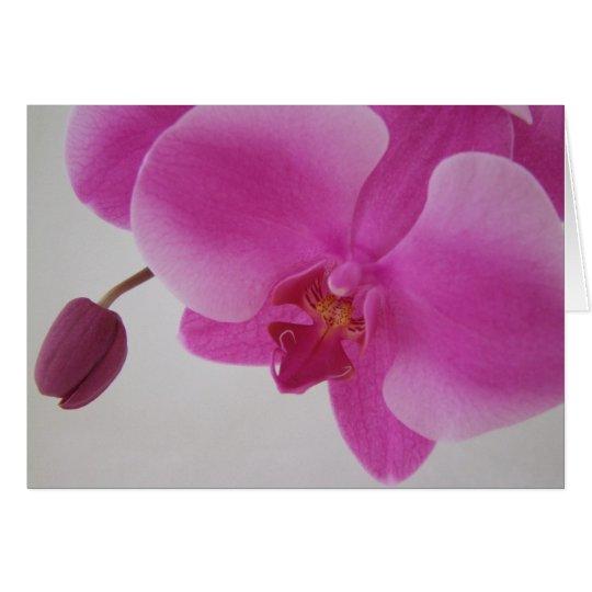 Orchidee und Knospe Grußkarte