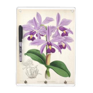 Orchideen-Blüte Memoboard
