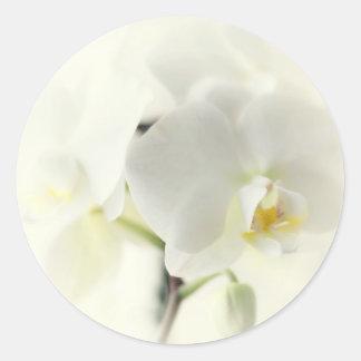 Orchideen Runder Aufkleber